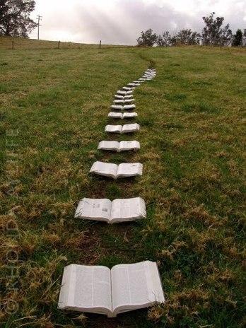book-love-books-to-read-23017111-468-624